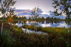 Ajardine o nascer do sol do por do sol dos animais selvagens em um lago selvagem terra da região selvagem Fotos de Stock Royalty Free