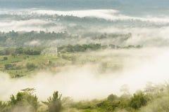 Ajardine o nascer do sol sonhador enevoado, fantástico nas montanhas, montagem Imagem de Stock