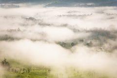 Ajardine o nascer do sol sonhador enevoado, fantástico nas montanhas, montagem Imagens de Stock Royalty Free