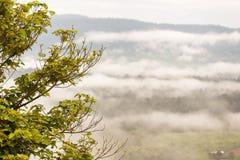 Ajardine o nascer do sol sonhador enevoado, fantástico nas montanhas, montagem Fotografia de Stock