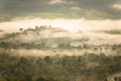 Ajardine o nascer do sol sonhador enevoado, fantástico nas montanhas, montagem Fotografia de Stock Royalty Free