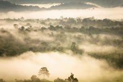 Ajardine o nascer do sol sonhador enevoado, fantástico nas montanhas, montagem Imagem de Stock Royalty Free