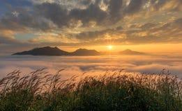 Ajardine o nascer do sol sonhador fantástico da vista enevoada nas montanhas w Imagem de Stock Royalty Free