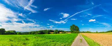 Ajardine o panorama com terra verde do campo e o céu azul Fotos de Stock Royalty Free