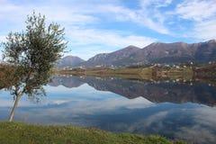Ajardine o panorama impressionante do parque do ablero da árvore dos montes da montanha da reflexão do céu das árvores do lago al Fotos de Stock
