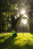 Ajardine o parque no banco do Daugava do rio em Riga Imagens de Stock