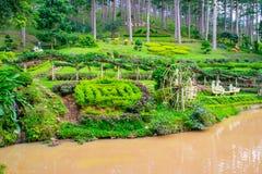 Ajardine o projeto de relaxam o jardim tropical com estátuas em um lado do rio, Imagem de Stock
