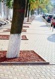Ajardine o projeto do parque da cidade sob a forma de uma passagem das placas ao centro Fotografia de Stock