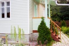 Ajardine o projeto sobre a casa - uma planta um thuja Foto de Stock Royalty Free