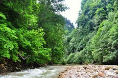 Ajardine o rio da montanha com as rochas grandes na costa Fotografia de Stock
