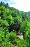 Ajardine o rio da montanha com as rochas grandes na costa Fotos de Stock