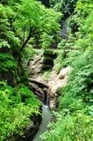 Ajardine o rio da montanha com as rochas grandes na costa Imagem de Stock Royalty Free