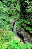 Ajardine o rio da montanha com as rochas grandes na costa Foto de Stock