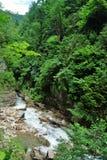 Ajardine o rio da montanha com as rochas grandes na costa Imagem de Stock