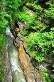 Ajardine o rio da montanha com as rochas grandes na costa no desfiladeiro de Guam Foto de Stock