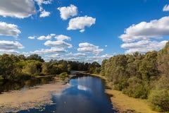 Ajardine o rio e a floresta em um fundo do céu azul Fotos de Stock Royalty Free