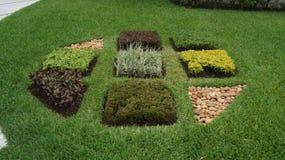 Ajardine o símbolo feito da vegetação e das pedras/rochas Imagem de Stock