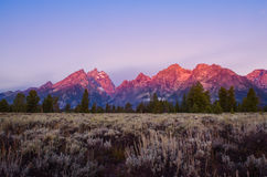 Ajardine a opinião do nascer do sol nas montanhas grandes de Teton, EUA Foto de Stock
