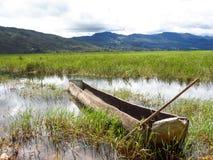 Ajardine a opinião do panorama do rio com o barco no campo Fotografia de Stock Royalty Free