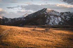 Ajardine, opinião do por do sol na passagem da independência perto de Aspen, Colorado Fotografia de Stock Royalty Free
