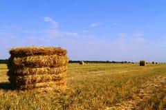 Ajardine a opinião do verão de rural arquivado com as nuvens apenas do feno afiançado Fotos de Stock