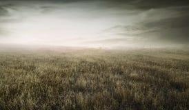 Ajardine a opinião a grama seca selvagem limitada por uma cerca de madeira Fotos de Stock Royalty Free
