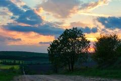 Ajardine, a paisagem ucraniana, por do sol no campo, Imagem de Stock Royalty Free