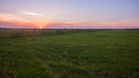 Ajardine, por do sol ensolarado bonito em um campo Foto de Stock