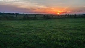 Ajardine, por do sol ensolarado bonito em um campo Fotografia de Stock Royalty Free