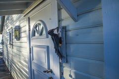 Ajardine por el mar en el invierno (la pulsación de corriente en la puerta) Foto de archivo