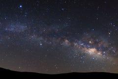Ajardine a silhueta da árvore com galáxia da Via Látea e dus do espaço fotografia de stock royalty free