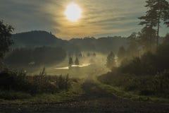 Ajardine, um amanhecer na névoa e nascer do sol Imagens de Stock Royalty Free