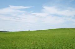 Ajardine um campo de uma nuvem Foto de Stock Royalty Free