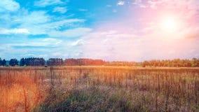 Ajardine um campo verde sob um nascer do sol colorido do alvorecer do por do sol do céu do verão borbulhante Copyspace no céu cla Imagens de Stock