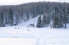 ajardine um taiga no inverno e nos povos Fotos de Stock