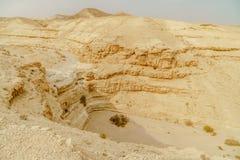 Ajardine a vista cênico do penhasco no deserto seco em Israel Imagens de Stock
