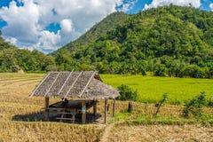 Ajardine a vista da cabana de madeira no campo de almofada com montanha Imagens de Stock Royalty Free
