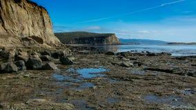 Ajardine a vista da costa no ponto Reyes imagens de stock
