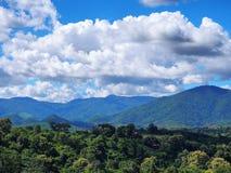 Ajardine a vista da floresta verde sob o céu azul nebuloso Foto de Stock Royalty Free