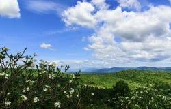 Ajardine a vista da montanha com céu azul e nuvens Imagens de Stock Royalty Free