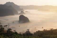 Ajardine a vista da montanha do ka do lang do langka de Phu no tempo de manhã Imagens de Stock