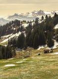 Ajardine a vista da montanha da neve dos cumes com bonde bonde Fotos de Stock