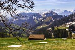 Ajardine a vista da montanha da neve dos cumes com bonde bonde Foto de Stock