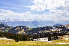 Ajardine a vista da montanha da neve dos cumes com o pinheiro que olha de Imagens de Stock Royalty Free