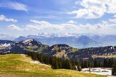 Ajardine a vista da montanha da neve dos cumes com o pinheiro que olha de Fotos de Stock