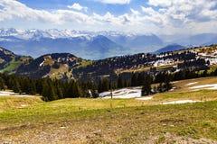 Ajardine a vista da montanha da neve dos cumes com o pinheiro que olha de Foto de Stock Royalty Free
