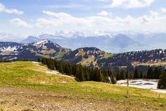 Ajardine a vista da montanha da neve dos cumes com o pinheiro que olha de Fotografia de Stock