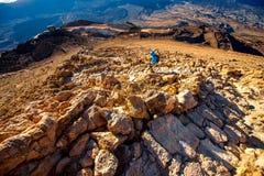 Ajardine a vista da parte superior do vulcão Teide Fotografia de Stock Royalty Free