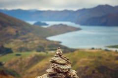 Ajardine a vista da pirâmide da rocha com fundo das montanhas, Nova Zelândia Fotos de Stock