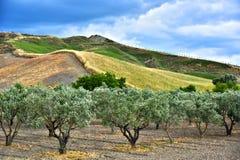 Ajardine a vista de Calabria, na província de Crotone, Itália Imagem de Stock